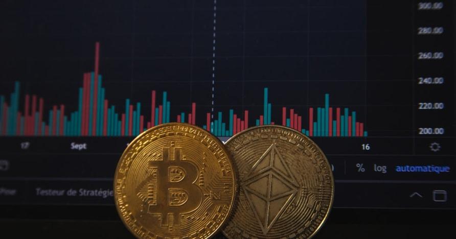 A Bitcoin szerencsejáték növekedni fog a legutóbbi PayPal-bejelentés után